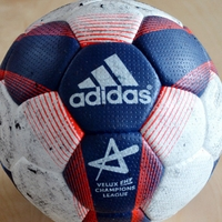 VELUX EHF FINAL4 charity auction goes live