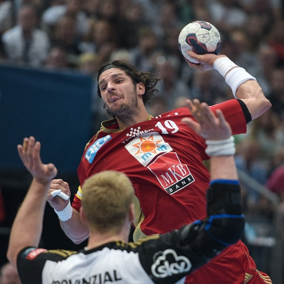 handball veszprem