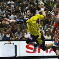 VELUX EHF Champions League 2012/13