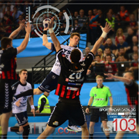 Sportradar seeks sports data journalists for EHF club competitions