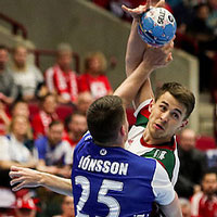 European Handball Federation 2020